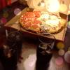 Noches de pizza