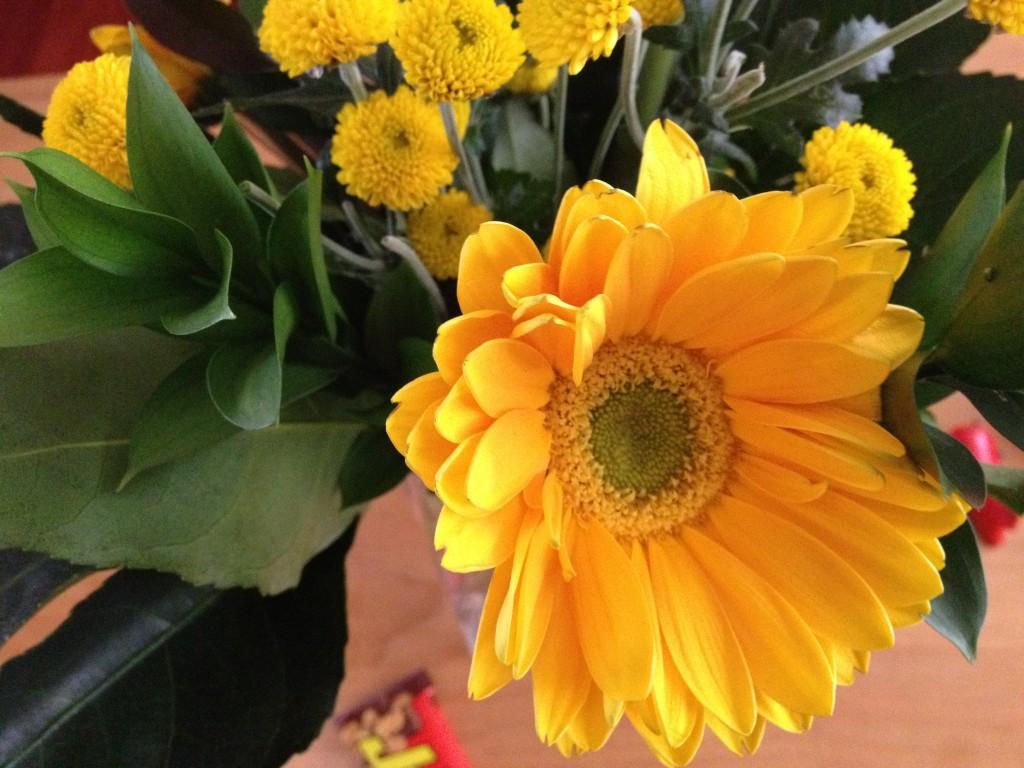 Flores- Cosas de san valentín